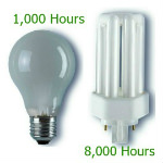GLS and PLT 2 Pin Light Bulb