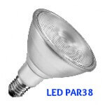 PAR38 LED Bulb ES Reflector Wide Flood