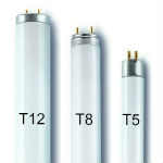 T12, T8 and T5 Fluorescent Tubes